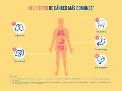 Anatomía patológica archivos - Diario Salud